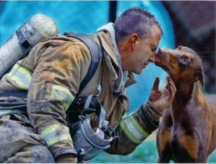 Самые трогательные фото