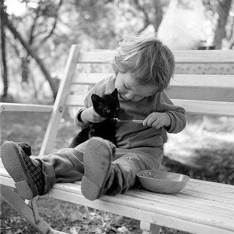 Позитивные моменты из жизни детей и их питомцев