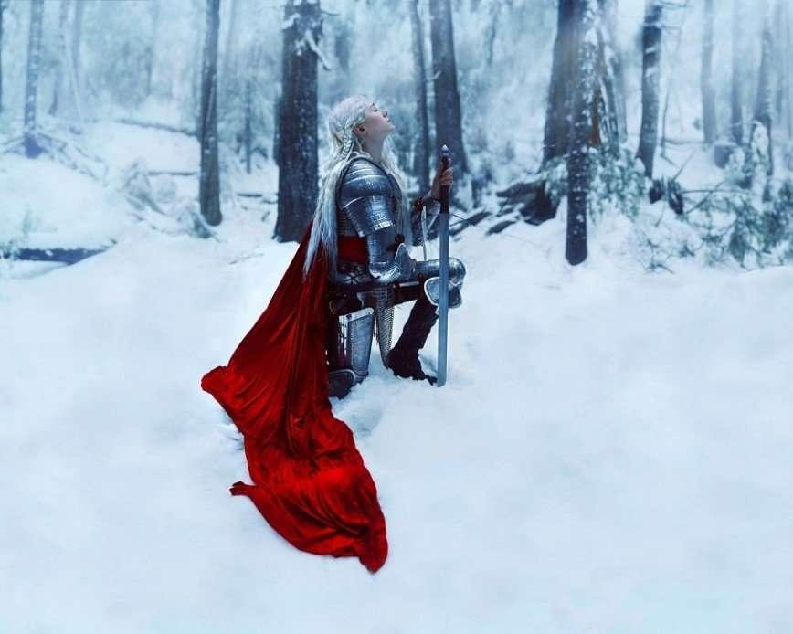 Средневековые рыцари Киндры Николь