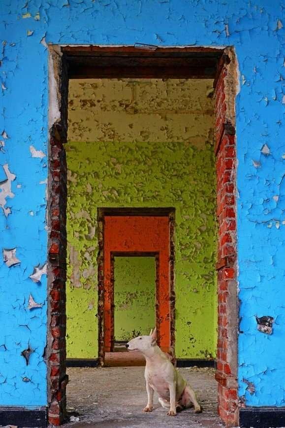 Urbex: путешествия по заброшенным местам